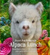Alpaca_cover_sendrev5lr